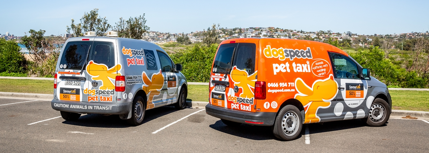 Image shows two pet taxi vehicles in Sydney NSW
